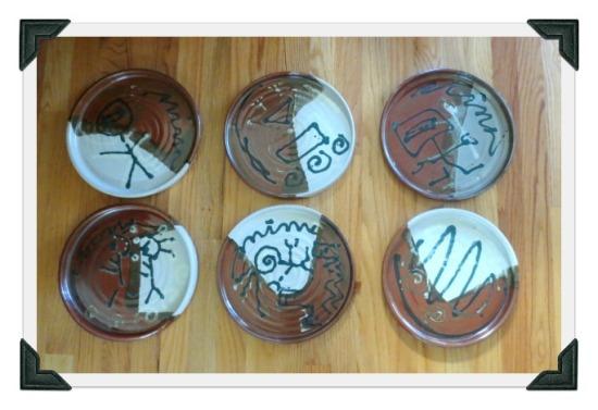 blog-6-plates