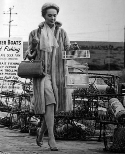 Tippi on the pier.