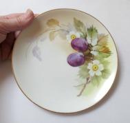 Nippon-plates5
