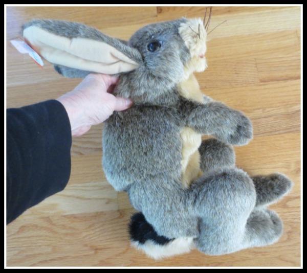 jack-rabbit