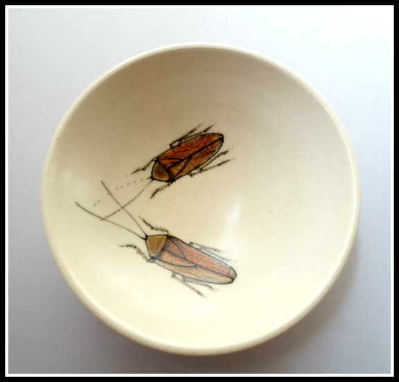 cockroach-dish