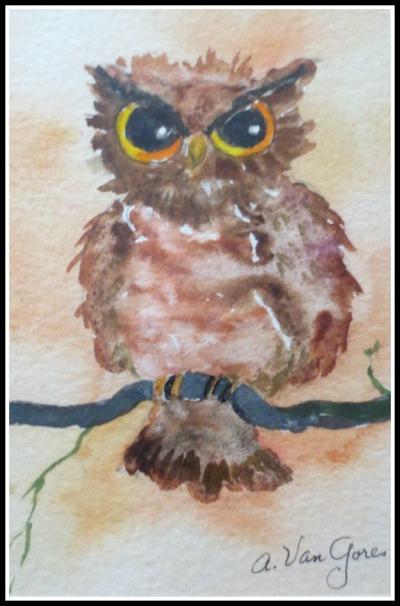 vangores-owl2